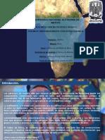 Africa y los Estereotipos