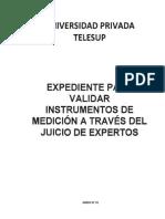 validacion de instrumentos RUD Y AMANDA carta