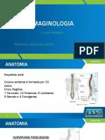 Imainologia - Coluna Vertebral