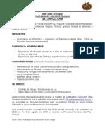 CONV-Profesional Soporte Tecnico 2020 1