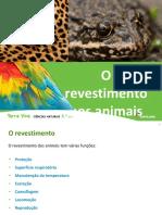 PowerPoint em pdf