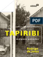 2_tapiribi