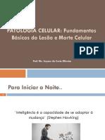 1. Patologia Celular_Fundamentos básicos da lesão e morte das celulas