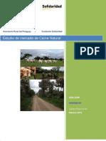 2015 04 25 Estudio de Mercado Carne Natural - Paraguay final - Pérez, L