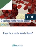 Blood-Marrow-Booklet Portuguese eBook 5.27.2014
