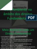 Direito Ambiental- apresentação