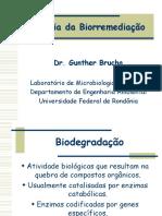 Ecologia da Biorremedia o
