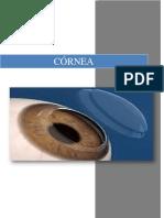 Cornea Docu