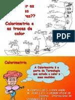 calorimetria-20081