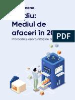 studiu-mediul-de-afaceri-2021