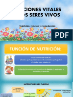 Presentacion sobre la función y nutrición.