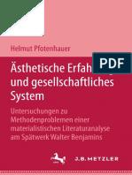PFOTENHAUER - Ästhetische Erfahrung und gesellschaftliches System