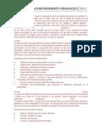 acompañamiento pedagogico informe