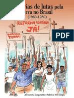Histórias de lutas pela terra no Brasil - E-Book