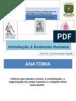 Introdução à Anatomia 2019 Gravação