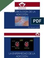 Neurobiologia de La Adiccion