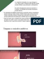 audicao3