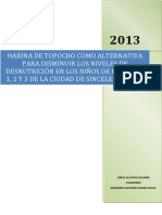 165516974 Proyecto Metodologia Harina de Topocho Argemiro