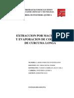 1617129550785_Informe Laboratorio de Investigacion Extraccion de Colorante de Curcuma Longa