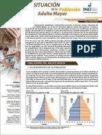 01 Informe Tecnico Población Adulta Mayor Oct-nov-dic 2020