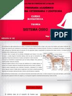BIOQUIMICA TEORIA VETERINARIA (Nº2) 2021 - I