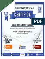 certificado196436