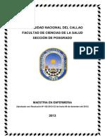182-13-CU MAESTRIA EN ENFERMERIA FCS- anexo