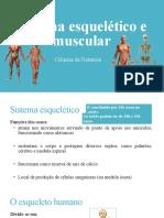 Sistema esquelético e muscular