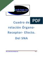 Cuadro de Relación organo-receptor-efecto