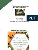Capitulo 4 Ecosistemas energia y nutrientes_SEXTO