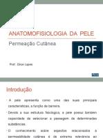 Anatomofisiologia -   Permeação Cutânea Aula 7