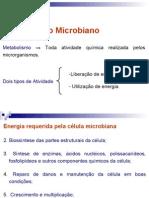 Aula 3 - Metabolismo Microbiano