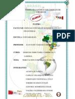 Tributacion Brasil Polo