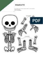 Esqueleto e Uso Do h