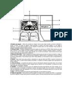 Digitech RP80 - Manual del Usuario