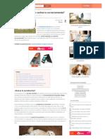 como-socializar-un-cachorro-correctamente-20163-html-2021-04-04-11_43_18