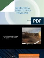 PEQUEÑA AGRICULTURA Y ALIMENTACIÓN FAMILIAR