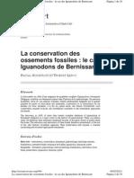 Godefroit P. y Leduc, T. Conservation Ossements Fossiles. 2008