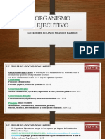 (4) (5) ORGANISMO EJECUTIVO (2)