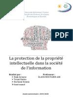 La protection de la proprieté intelectuelle dans la société de linformation