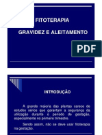 NOVAES, PLANTAS GRAVIDEZ E ALEITAMENTO