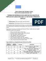 Terminos de referencia fase II