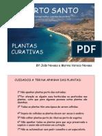 PORTO SANTO PLANTAS