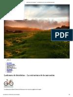 Ladrones de bicicletas – La estructura de la narración|Llevate todo