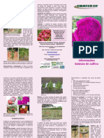 Folder_Fluticultura_pitaya_6 (1)