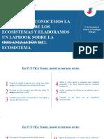2°_SEC_BIOLOGÍA_SESION 01_ORGANIZACIÓN DE LOS ECOSISTEMAS
