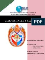 vias visuales y campo visual trabajo