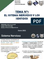 TEMA N°1 2do año GFM pdf