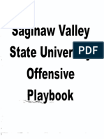 SAGINAW UNIVERSITY splitback veer