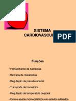 Cardiovascular-I